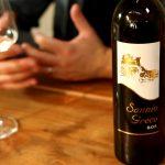 I vini integralmente prodotti, sai che cosa sono?  Scopri perchè sceglierli.